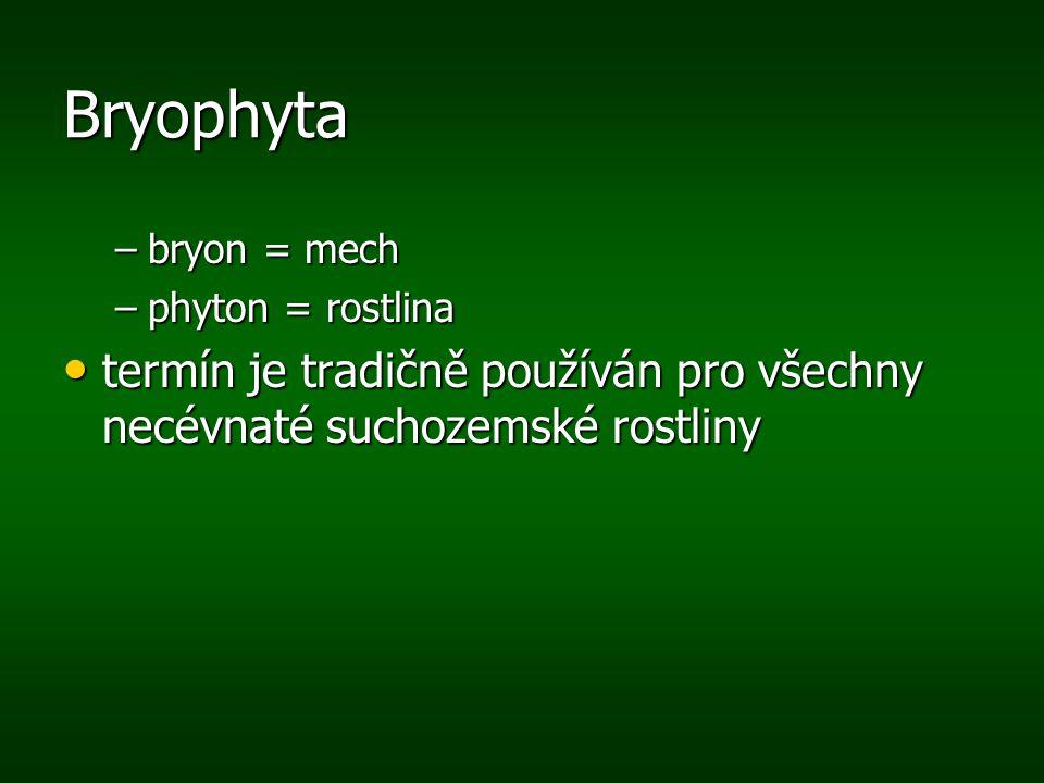 Bryophyta bryon = mech. phyton = rostlina.