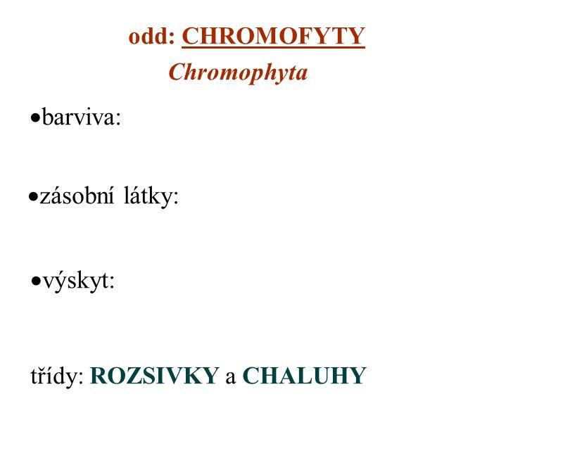 barviva: zásobní látky: výskyt: odd: CHROMOFYTY Chromophyta