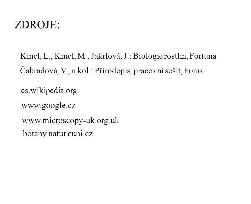 ZDROJE: www.google.cz www.microscopy-uk.org.uk botany.natur.cuni.cz