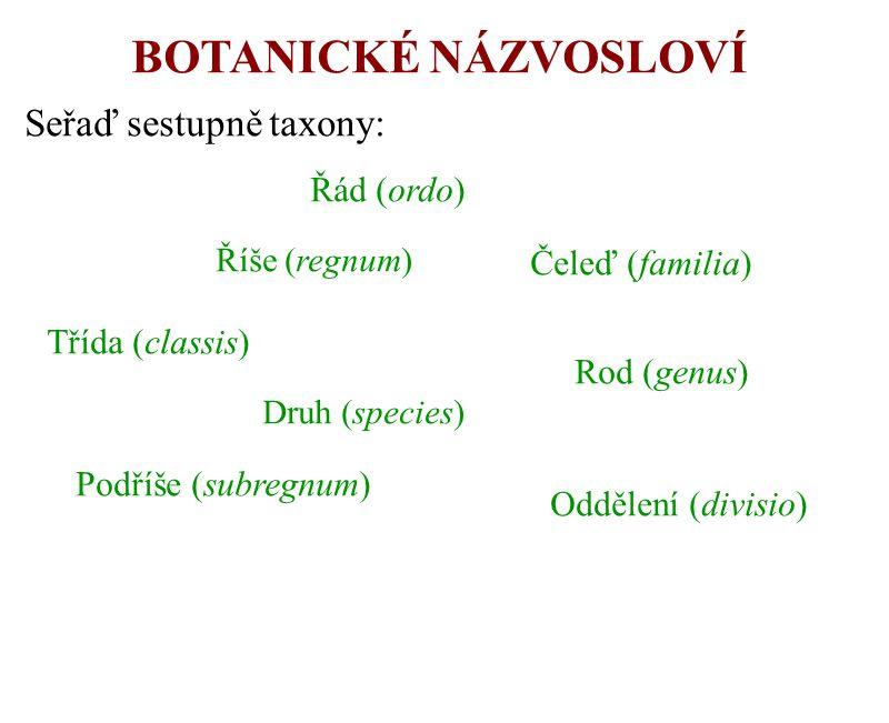 BOTANICKÉ NÁZVOSLOVÍ Seřaď sestupně taxony: Řád (ordo) Čeleď (familia)