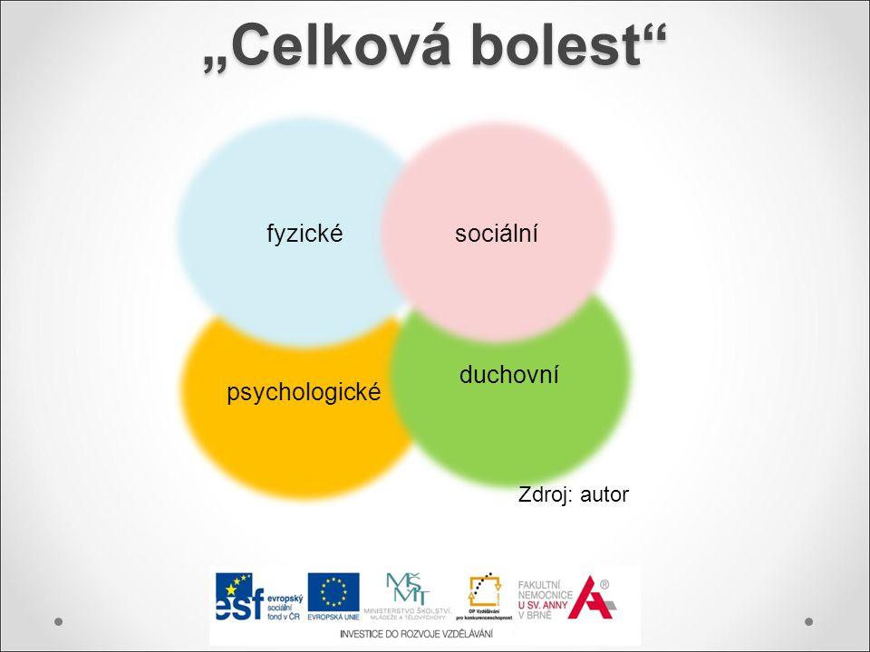 """""""Celková bolest fyzické sociální duchovní psychologické Zdroj: autor"""