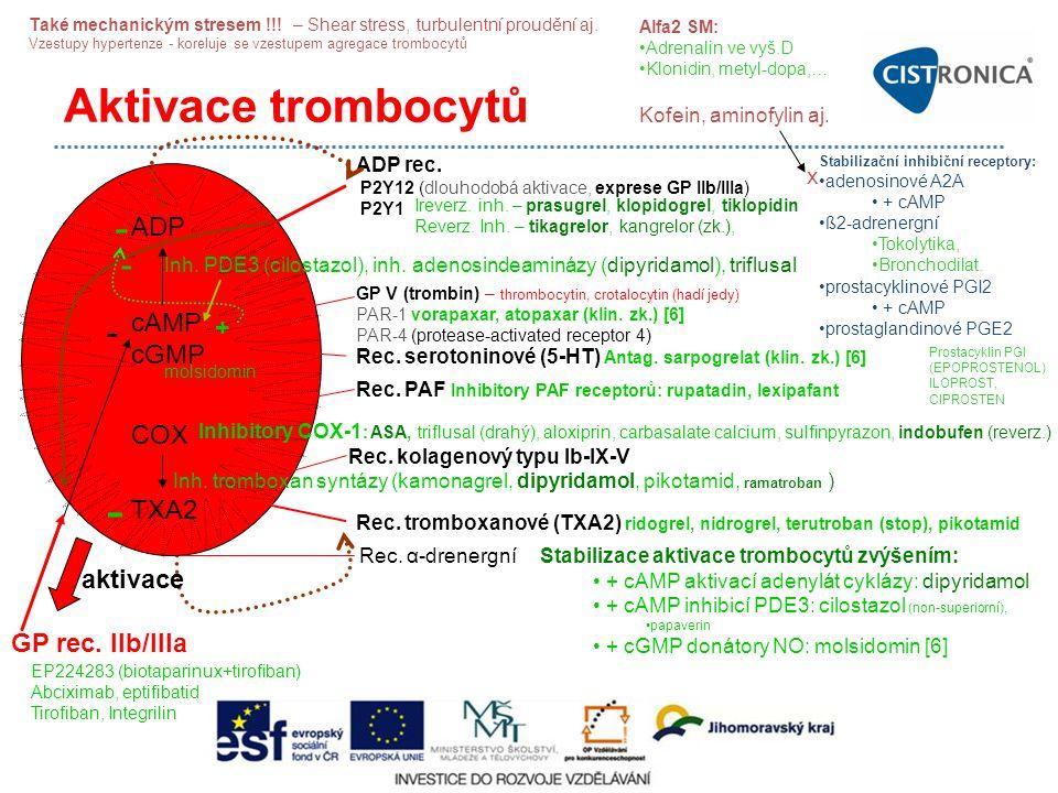 - Aktivace trombocytů - - - ADP cAMP cGMP + COX TXA2 aktivace