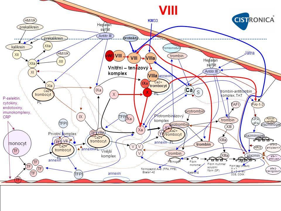 VIII Ca VIII Játra VIII VIIIa Vnitřní – tenázový komplex VIIIa S