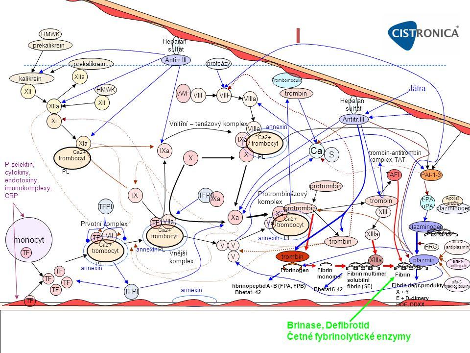 I Ca Brinase, Defibrotid Četné fybrinolytické enzymy Játra S monocyt