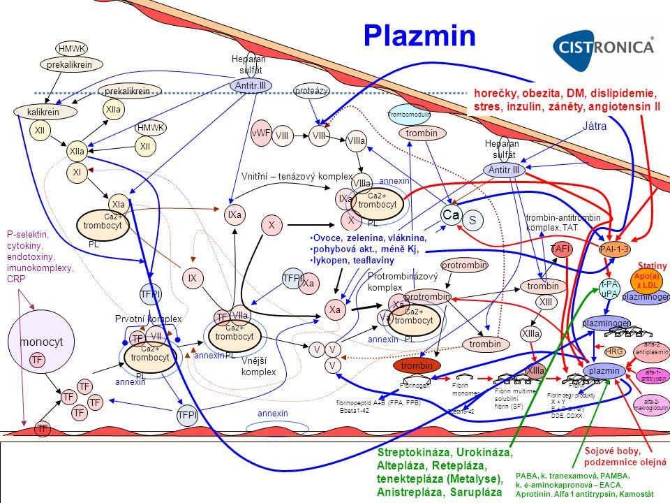 Plazmin Ca horečky, obezita, DM, dislipidemie,