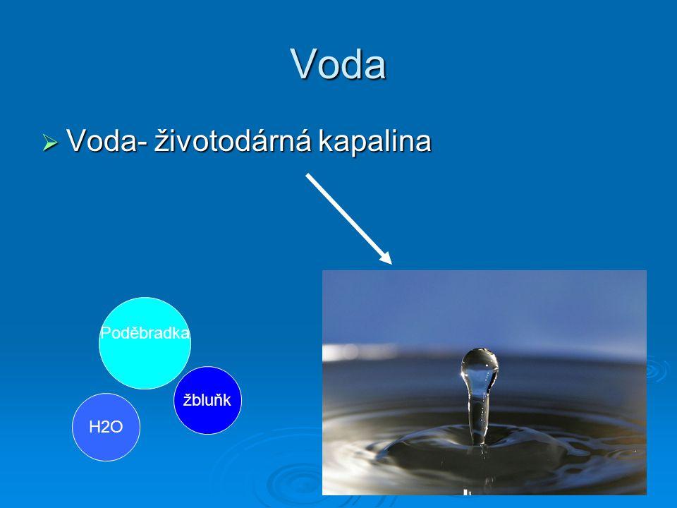 Voda Voda- životodárná kapalina Poděbradka žbluňk H2O