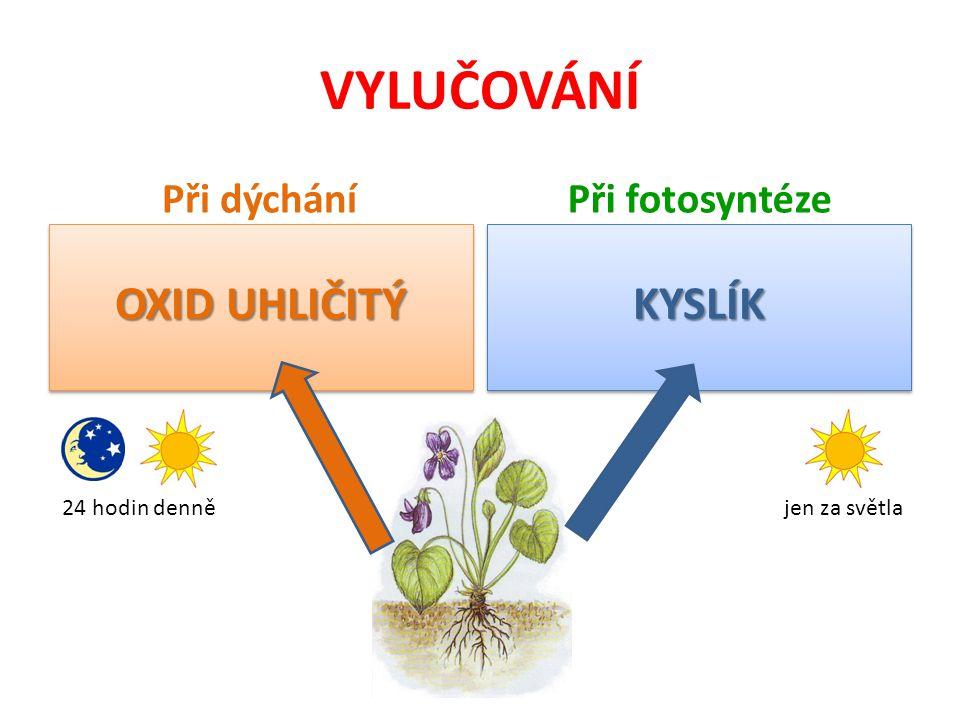 VYLUČOVÁNÍ OXID UHLIČITÝ KYSLÍK Při dýchání Při fotosyntéze