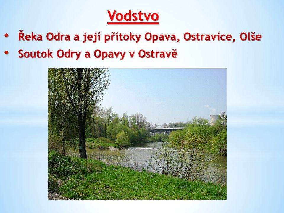 Vodstvo Řeka Odra a její přítoky Opava, Ostravice, Olše