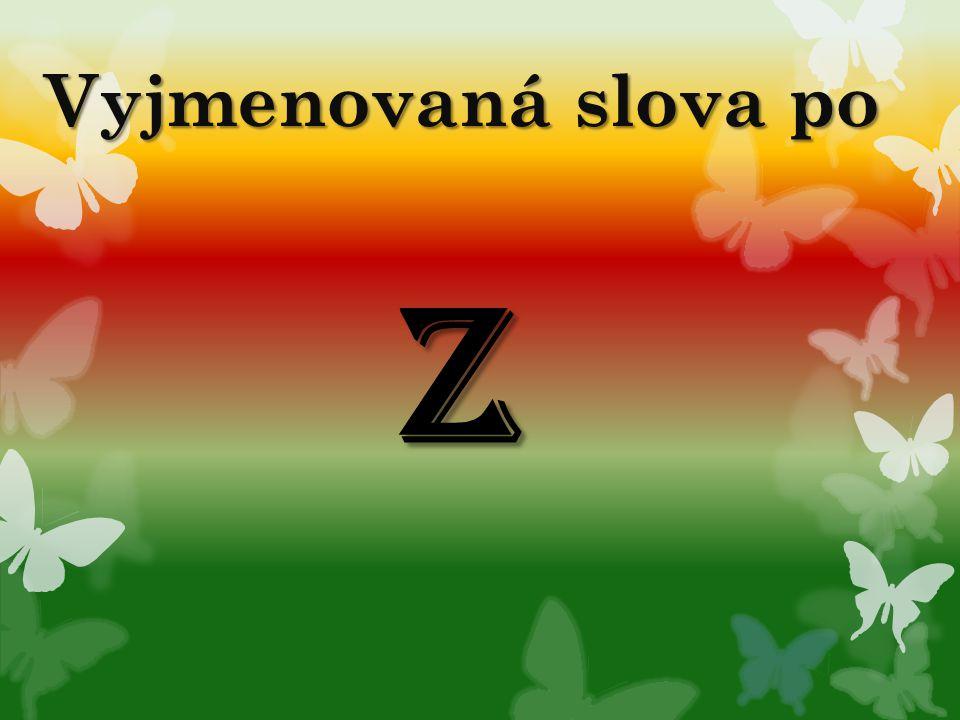 Vyjmenovaná slova po Z