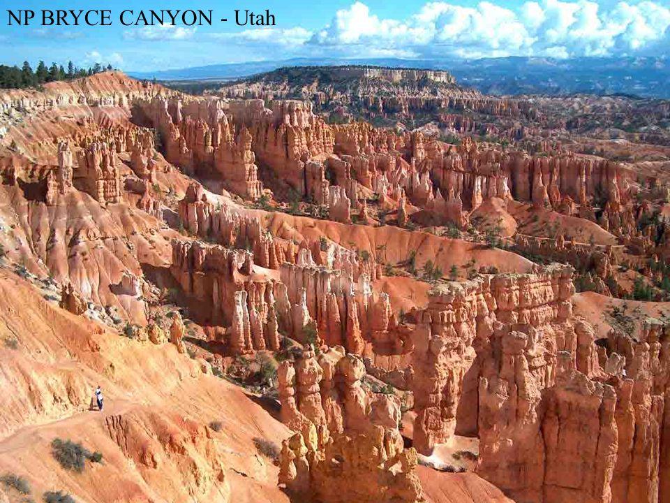 NP BRYCE CANYON - Utah