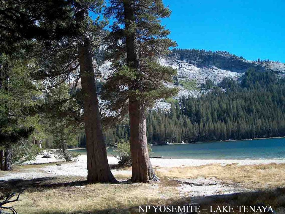 NP YOSEMITE – LAKE TENAYA