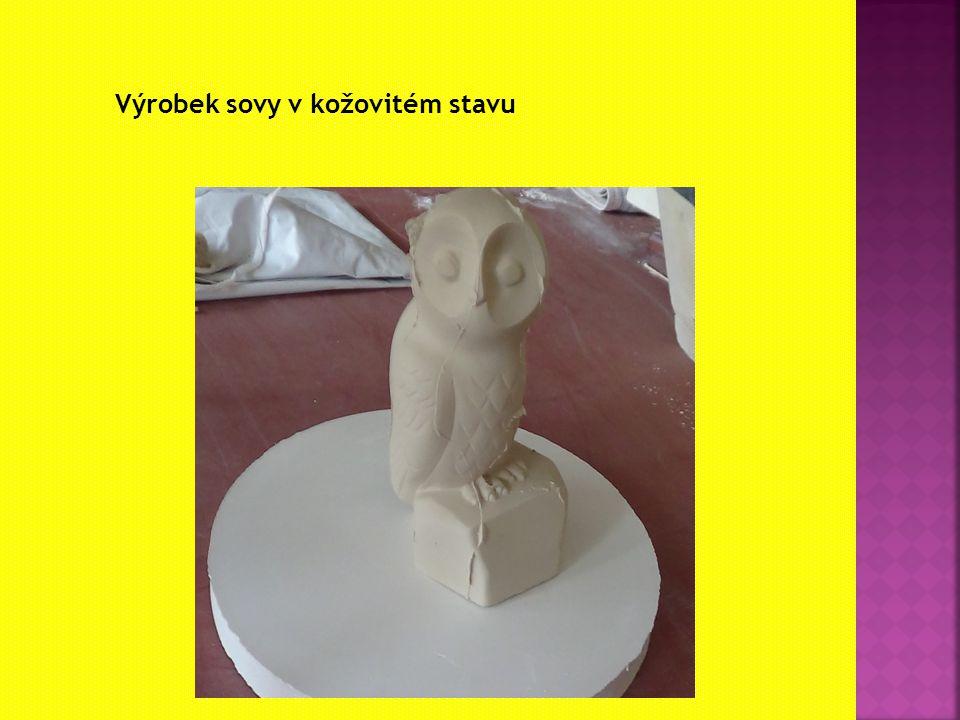 Výrobek sovy v kožovitém stavu