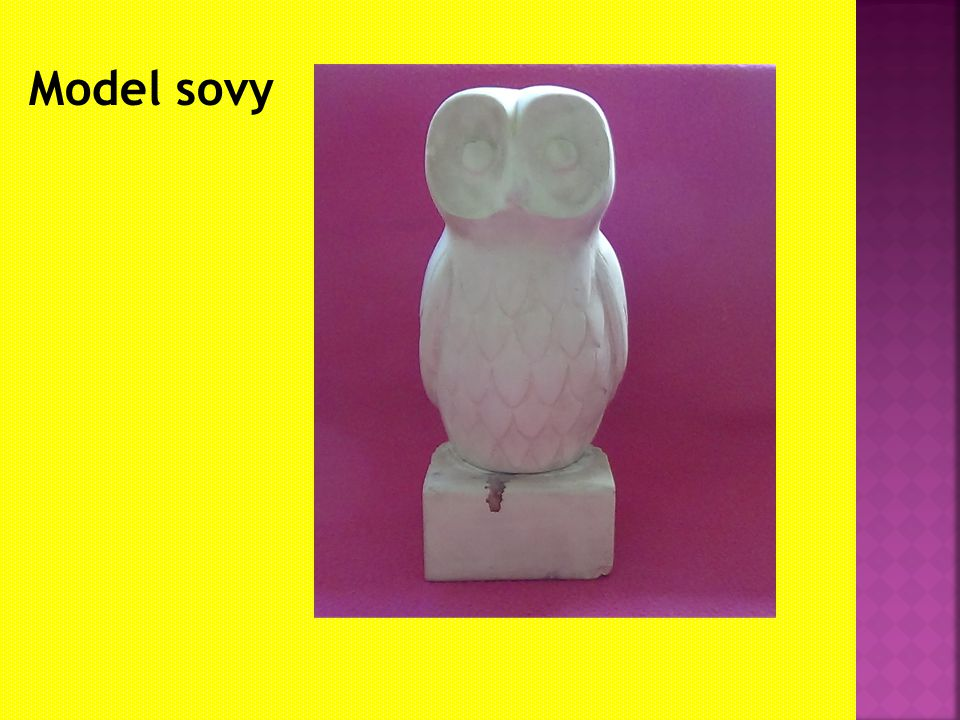 Model sovy