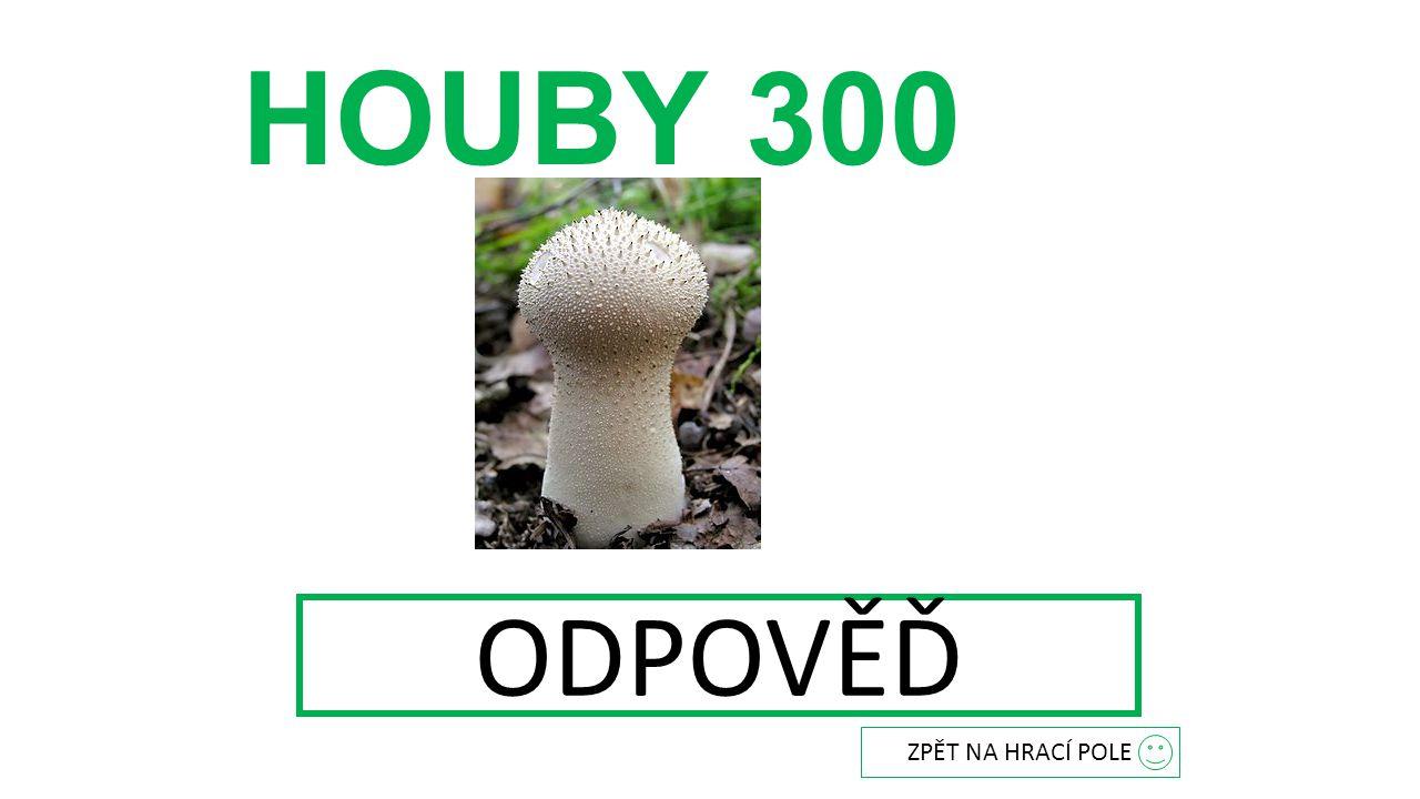 HOUBY 300 ODPOVĚĎ Pýchavka obecná ZPĚT NA HRACÍ POLE