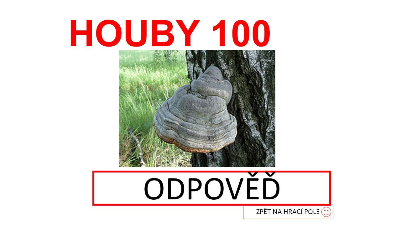 HOUBY 100 ODPOVĚĎ troudnatec ZPĚT NA HRACÍ POLE
