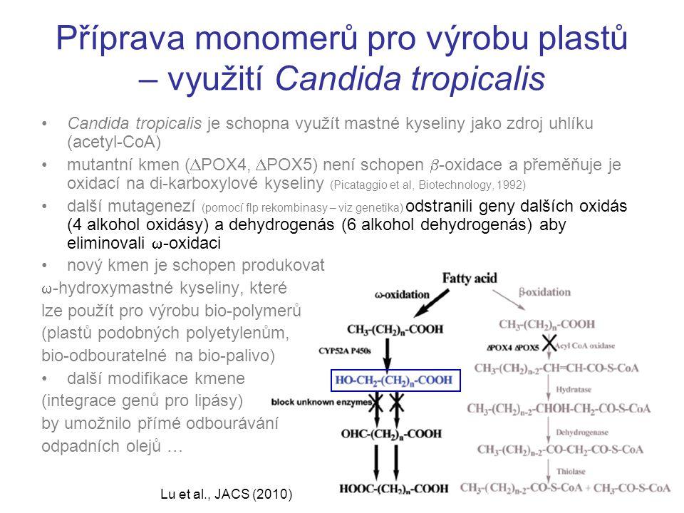 Příprava monomerů pro výrobu plastů – využití Candida tropicalis