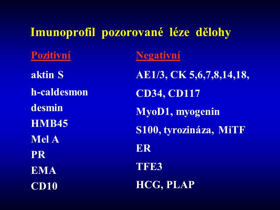 Imunoprofil pozorované léze dělohy