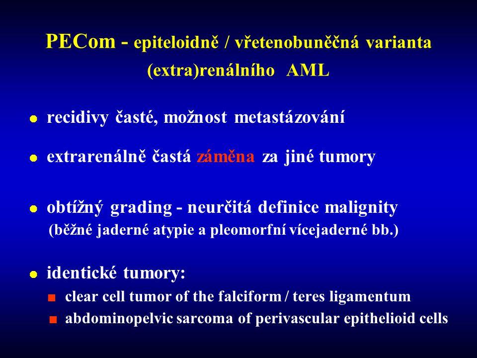 PECom - epiteloidně / vřetenobuněčná varianta (extra)renálního AML