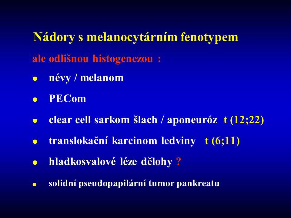 Nádory s melanocytárním fenotypem