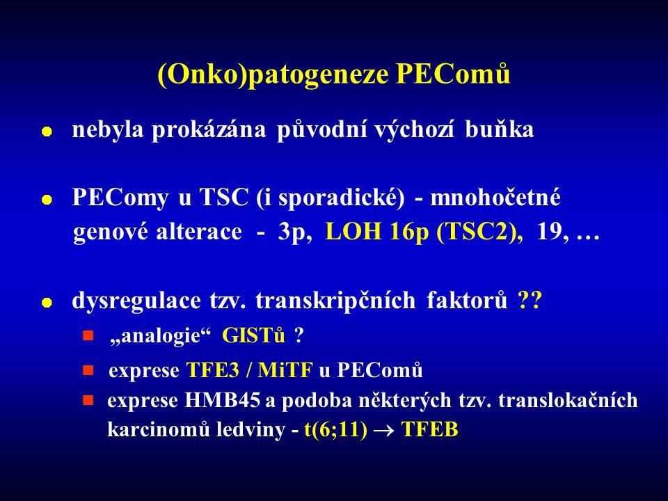 (Onko)patogeneze PEComů