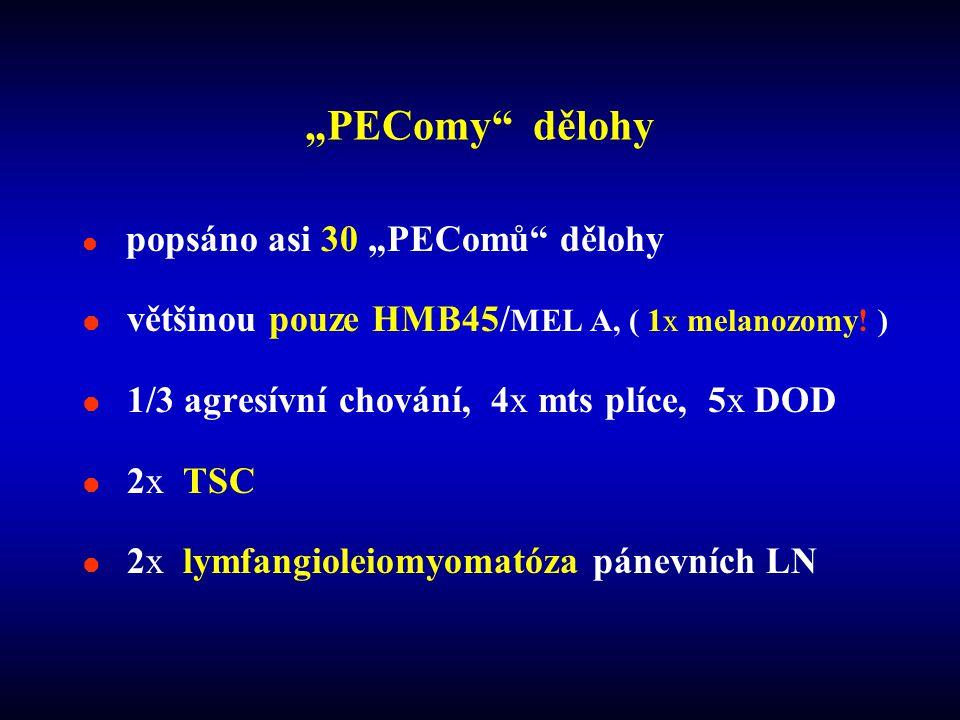 """PEComy dělohy většinou pouze HMB45/MEL A, ( 1x melanozomy! )"