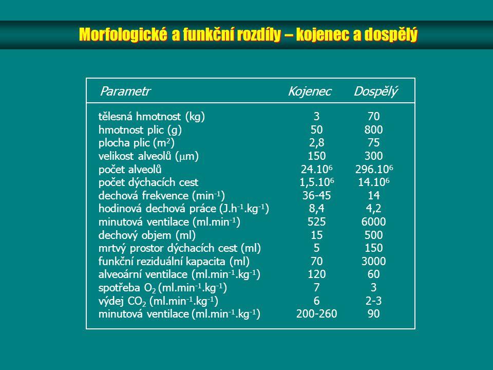 Morfologické a funkční rozdíly – kojenec a dospělý