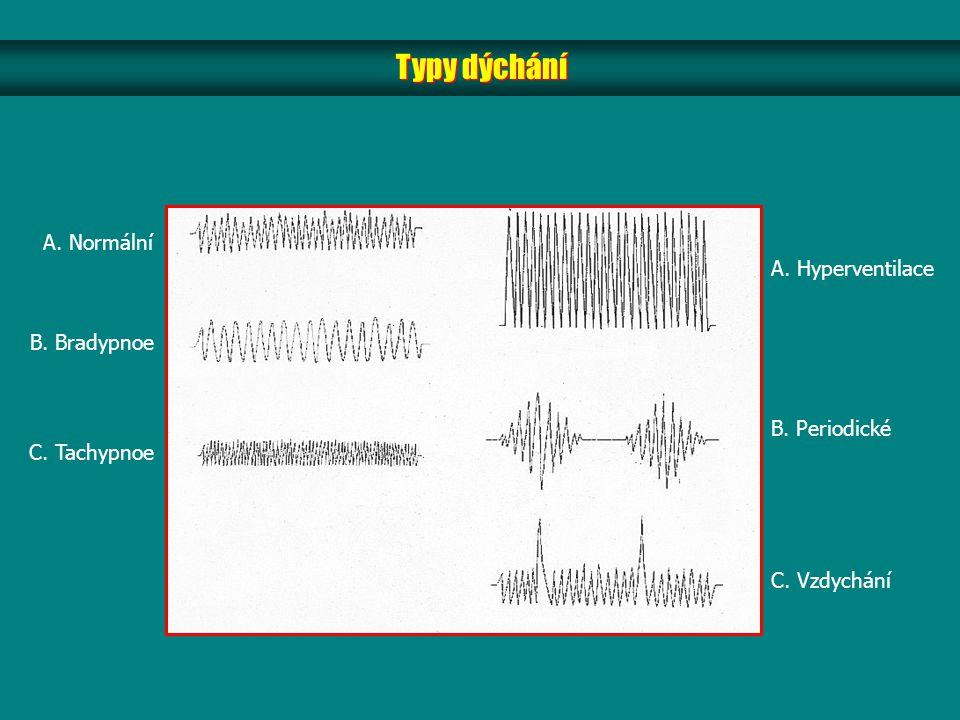 Typy dýchání A. Normální A. Hyperventilace B. Bradypnoe B. Periodické