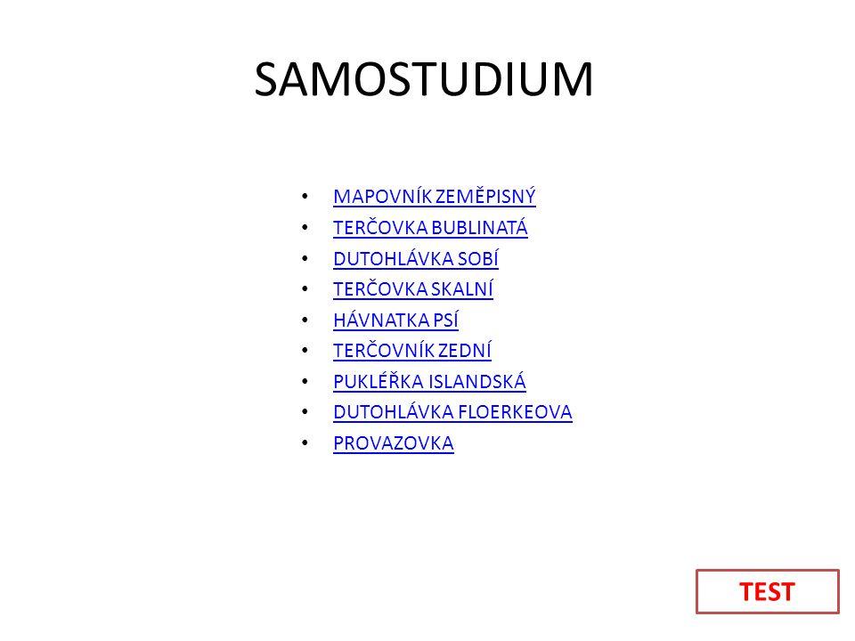 SAMOSTUDIUM TEST MAPOVNÍK ZEMĚPISNÝ TERČOVKA BUBLINATÁ DUTOHLÁVKA SOBÍ