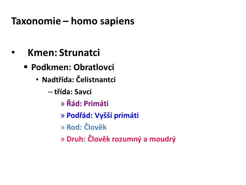 Taxonomie – homo sapiens Kmen: Strunatci