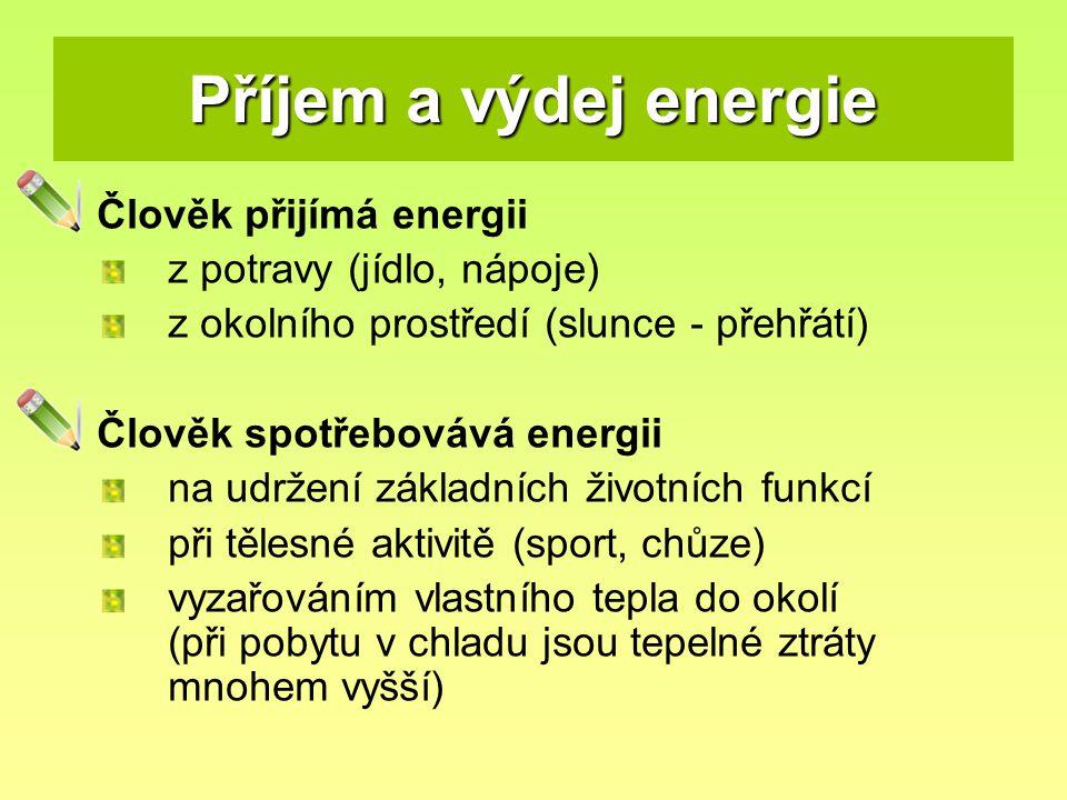 Příjem a výdej energie Člověk přijímá energii