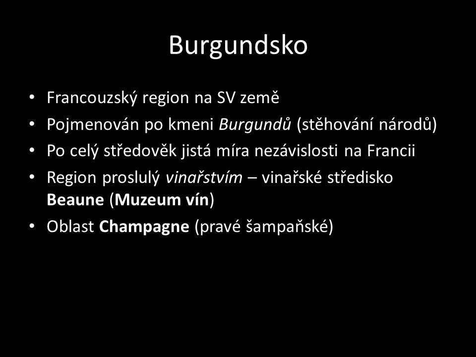 Burgundsko Francouzský region na SV země
