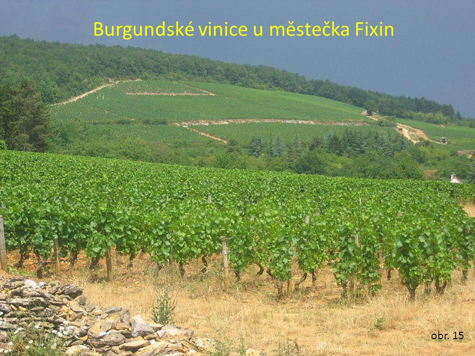Burgundské vinice u městečka Fixin