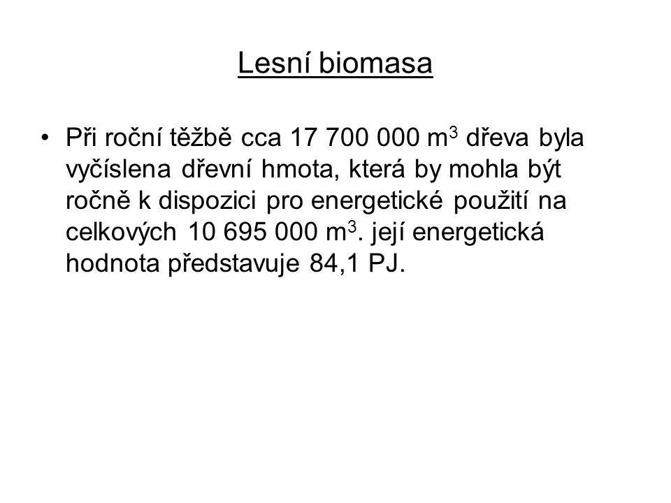 Lesní biomasa