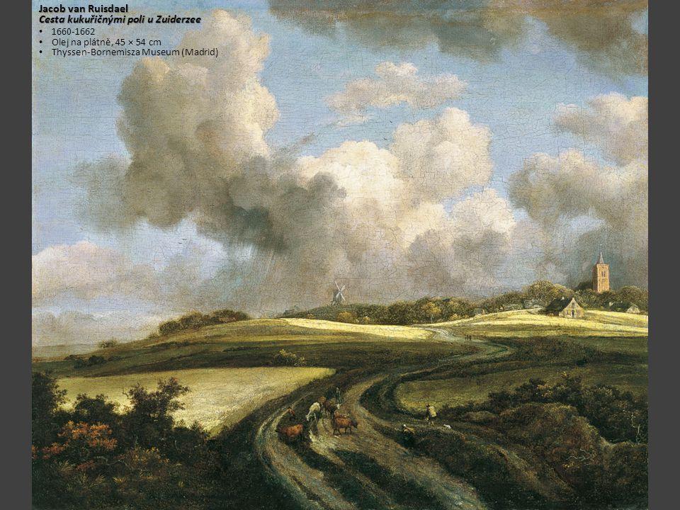 Cesta kukuřičnými poli u Zuiderzee
