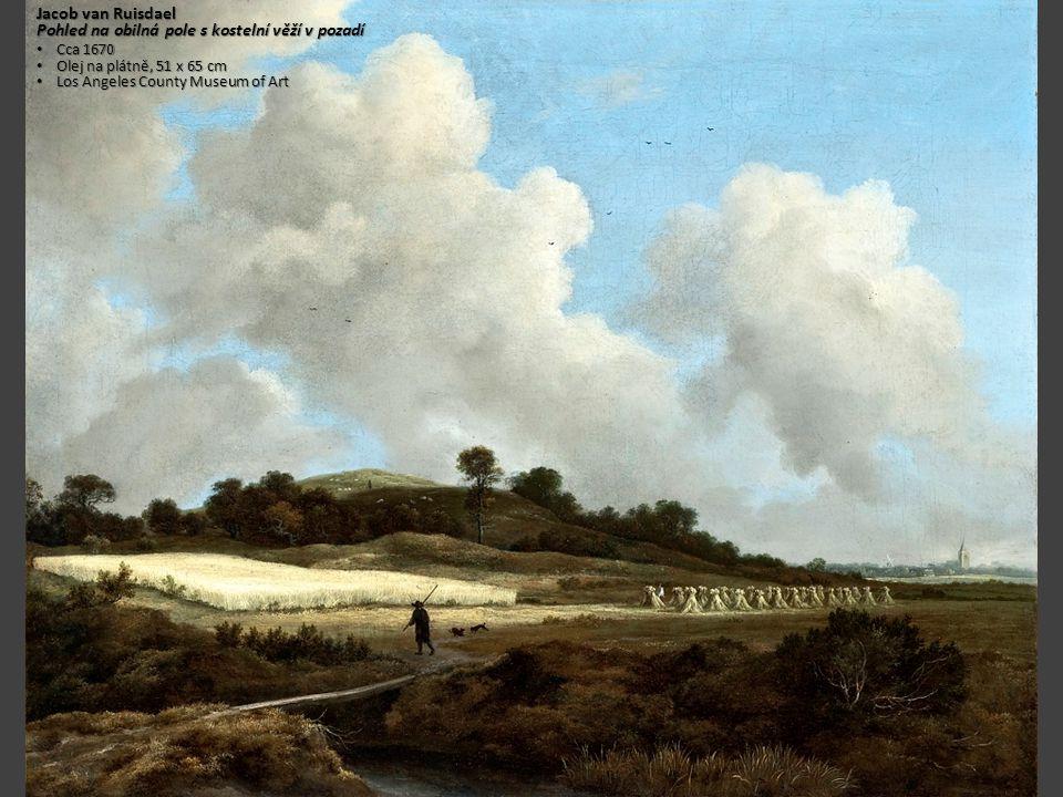 Pohled na obilná pole s kostelní věží v pozadí