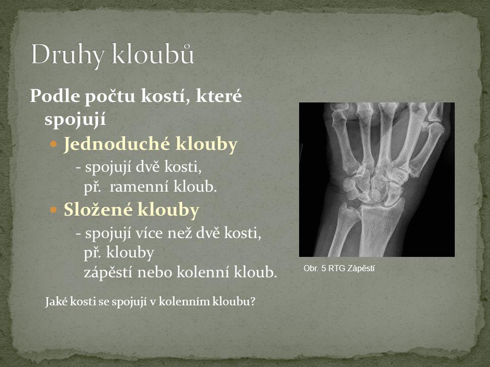Druhy kloubů Podle počtu kostí, které spojují Jednoduché klouby
