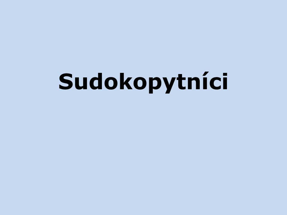 Sudokopytníci
