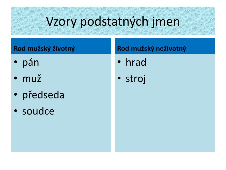 Vzory podstatných jmen
