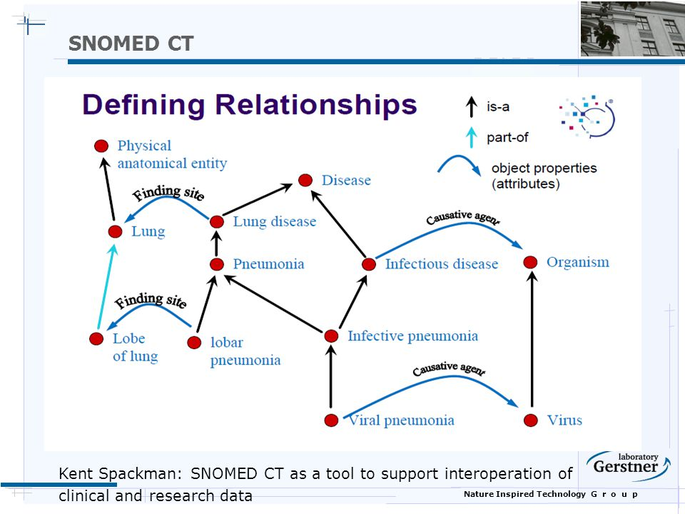 SNOMED CT Kent Spackman: SNOMED CT as a tool to support interoperation of.