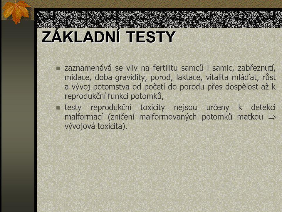 ZÁKLADNÍ TESTY