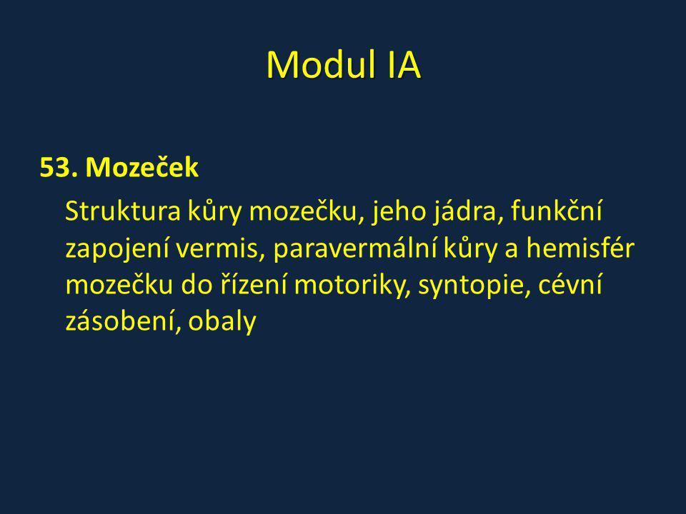 Modul IA