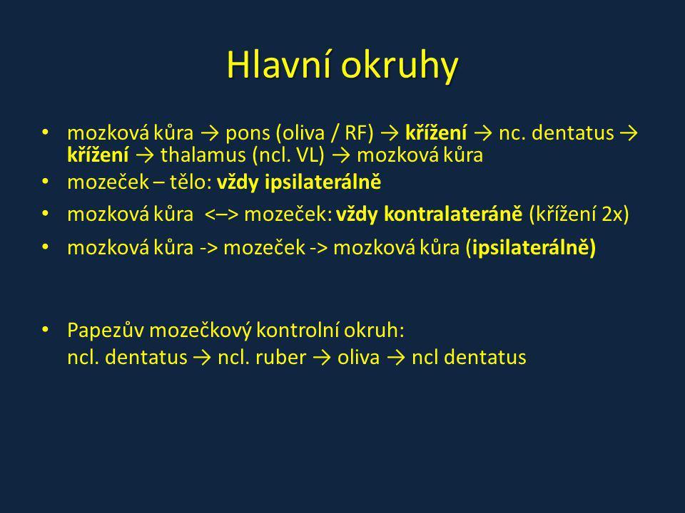 Hlavní okruhy mozková kůra → pons (oliva / RF) → křížení → nc. dentatus → křížení → thalamus (ncl. VL) → mozková kůra.