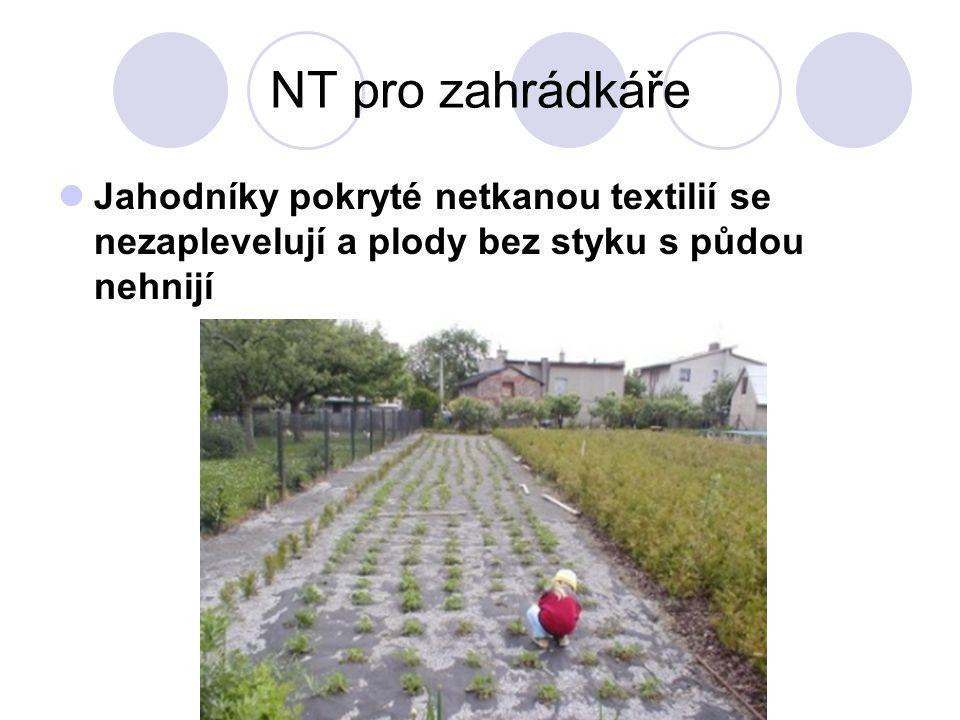 NT pro zahrádkáře Jahodníky pokryté netkanou textilií se nezaplevelují a plody bez styku s půdou nehnijí.
