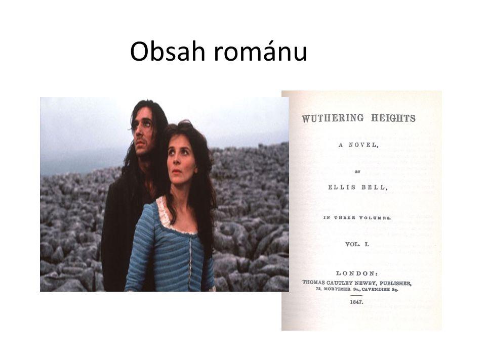Obsah románu