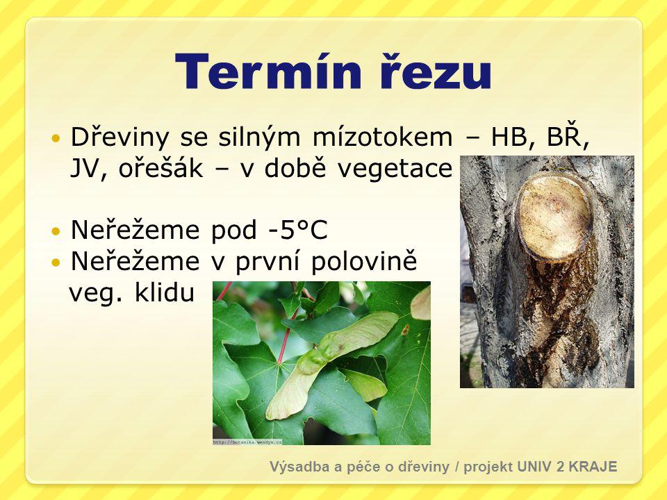 Termín řezu Dřeviny se silným mízotokem – HB, BŘ, JV, ořešák – v době vegetace. Neřežeme pod -5°C.
