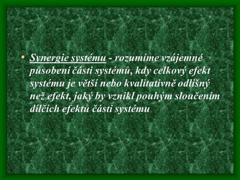 Synergie systému - rozumíme vzájemné působení části systémů, kdy celkový efekt systému je větší nebo kvalitativně odlišný než efekt, jaký by vznikl pouhým sloučením dílčích efektů části systému