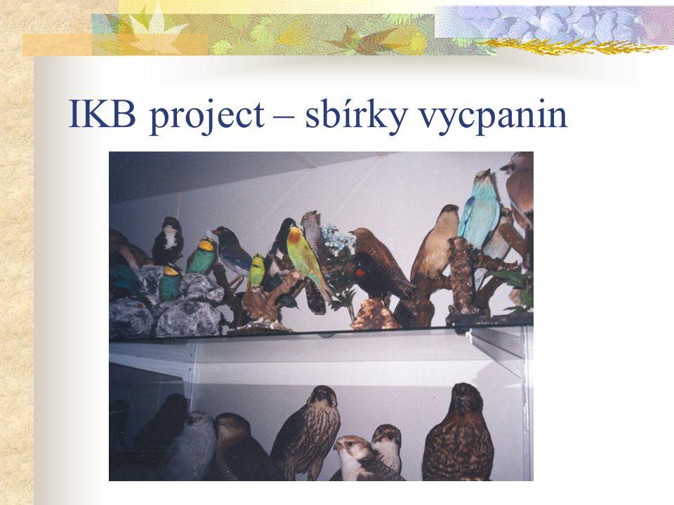 IKB project – sbírky vycpanin