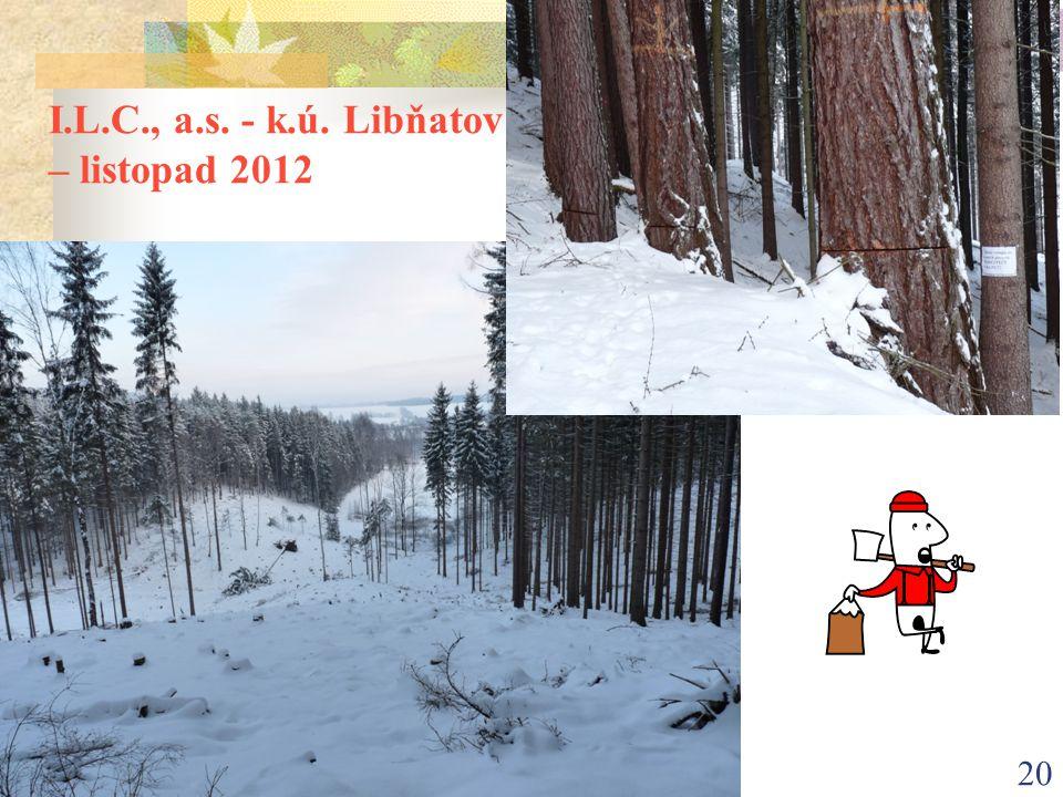 I.L.C., a.s. - k.ú. Libňatov – listopad 2012