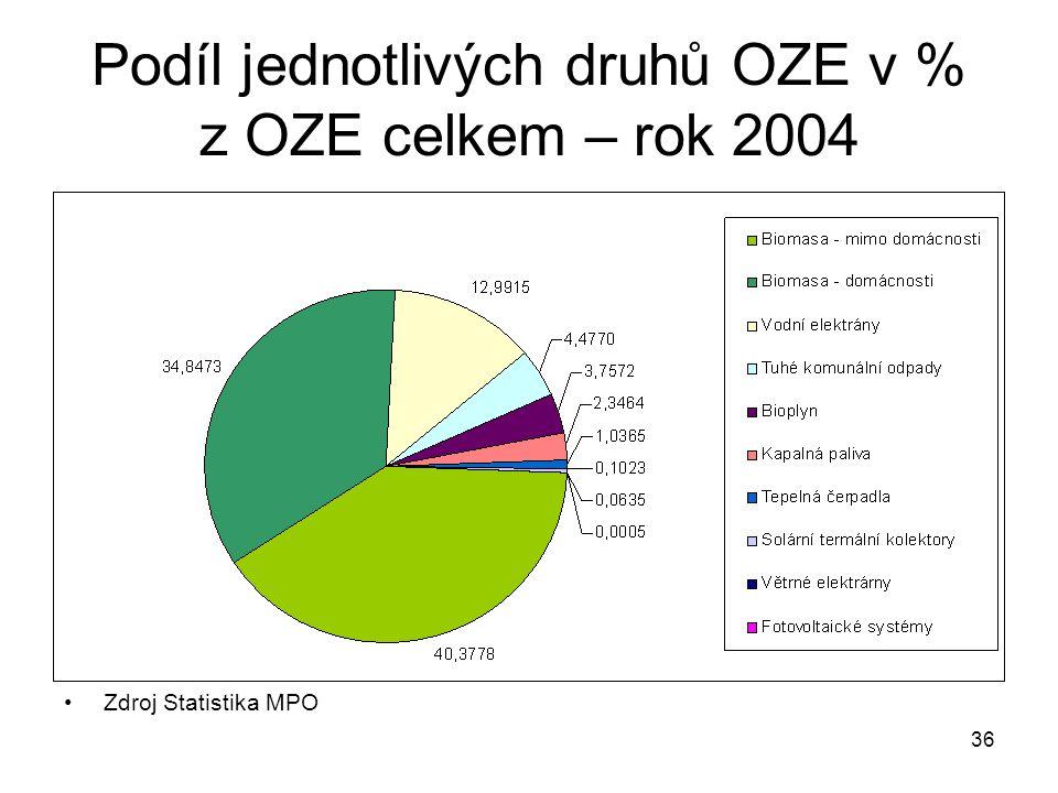 Podíl jednotlivých druhů OZE v % z OZE celkem – rok 2004