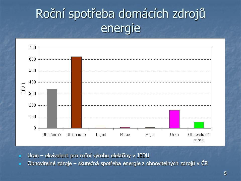 Roční spotřeba domácích zdrojů energie